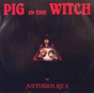 Antonius Rex Pig In The Witch album cover