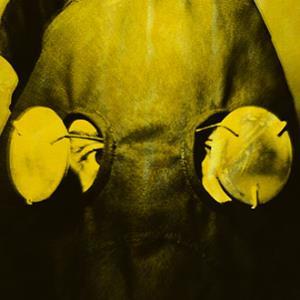 Brennisteinn by SIGUR RÓS album cover