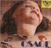 Un Falco Nel Cielo / Prehistoric Sound by OSAGE TRIBE album cover