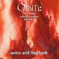 Amino Acid Flashback by OHM album cover