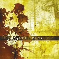 The Gathering Accessories album cover