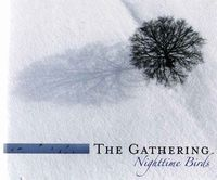 The Gathering Nighttime Birds (limited deluxe edition) album cover