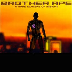 Brother Ape - A Rare Moment Of Insight CD (album) cover