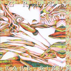 Rare Birds by GRITS album cover