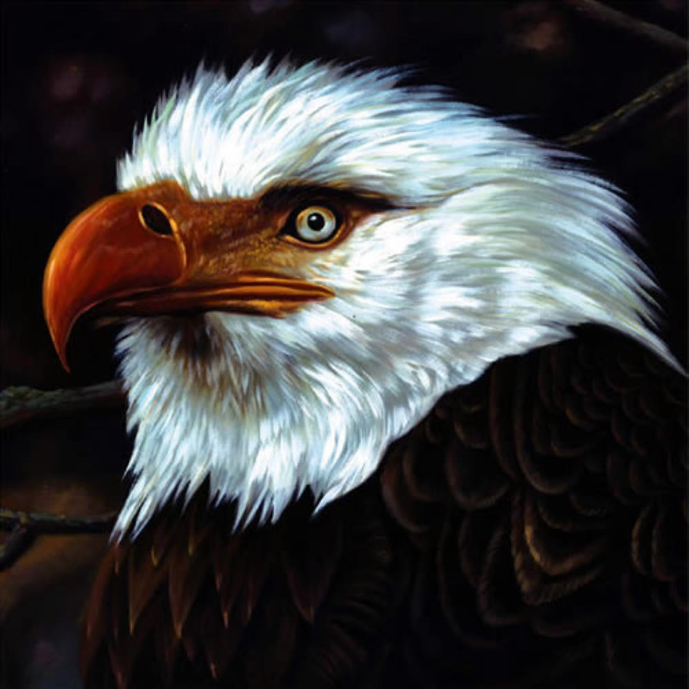 Mogwai The Hawk Is Howling album cover