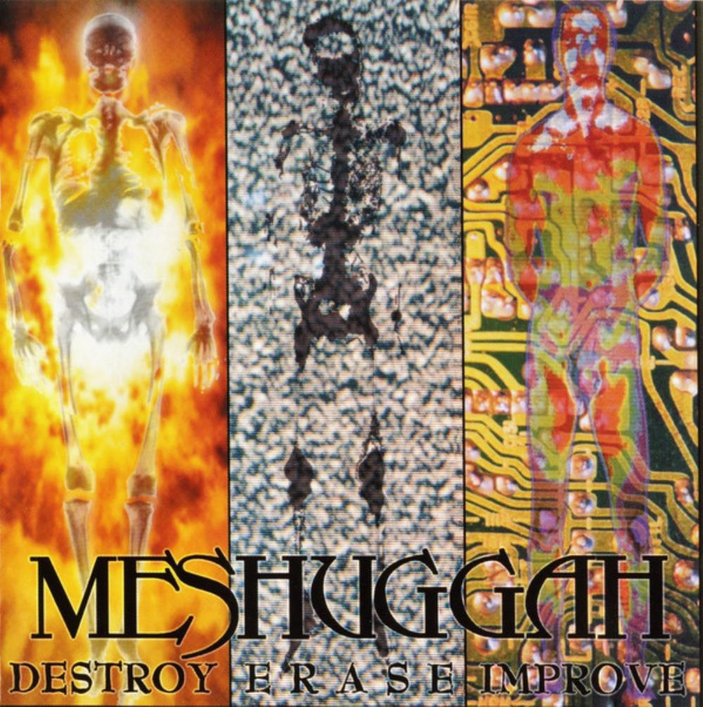 Destroy Erase Improve by MESHUGGAH album cover