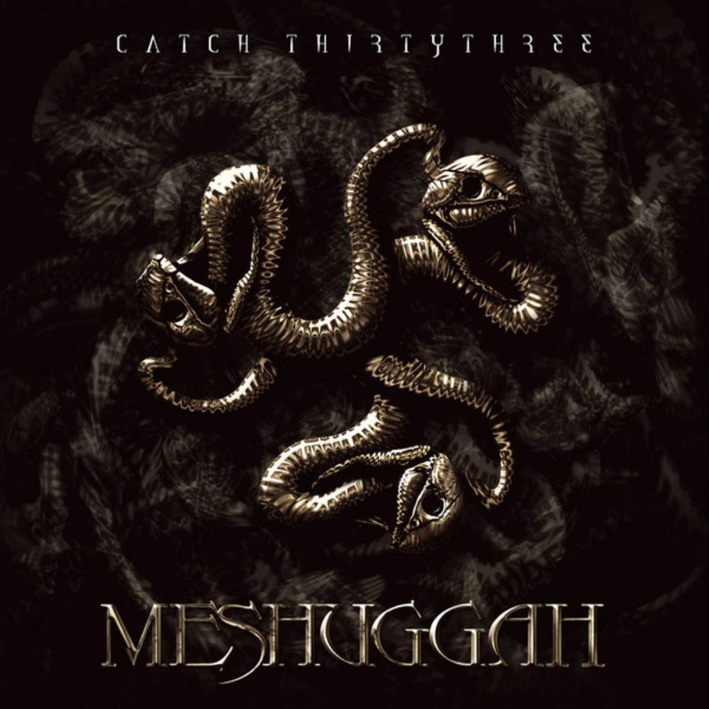 Catch Thirtythree by MESHUGGAH album cover