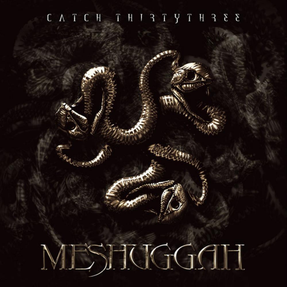 Catch Thirtythree by MESHUGGAH album cover