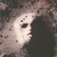 Constellations by SCHNITZLER, CONRAD album cover