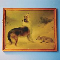 Travels in Constants (Vol. 21): The Rescue by EXPLOSIONS IN THE SKY album cover