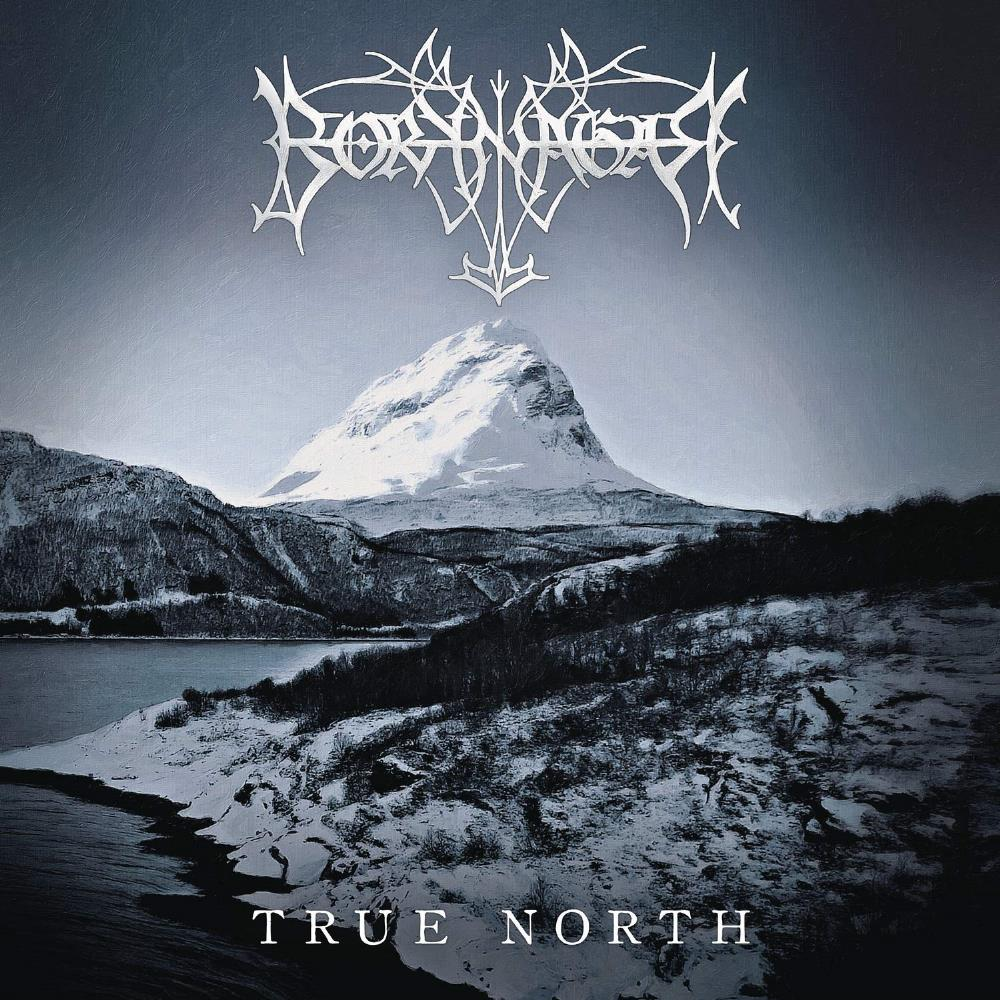 True North by BORKNAGAR album cover