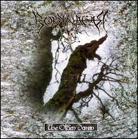 Borknagar - The Olden Domain CD (album) cover