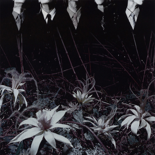 Ain't Afraid To Die by DIR EN GREY album cover