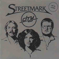 Dry by STREETMARK album cover