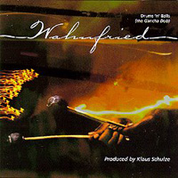 Richard Wahnfried Wahnfried: Drums 'n' Balls (The Gancha Dub) album cover