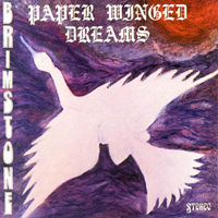 Paper Winged Dreams by BRIMSTONE album cover