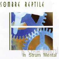Sombre Reptile In Strum Mental album cover