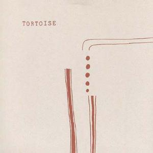 Why We Fight by TORTOISE album cover