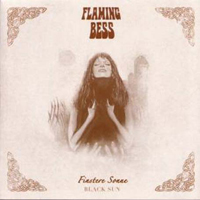 Finstere Sonne / Black Sun by FLAMING BESS album cover
