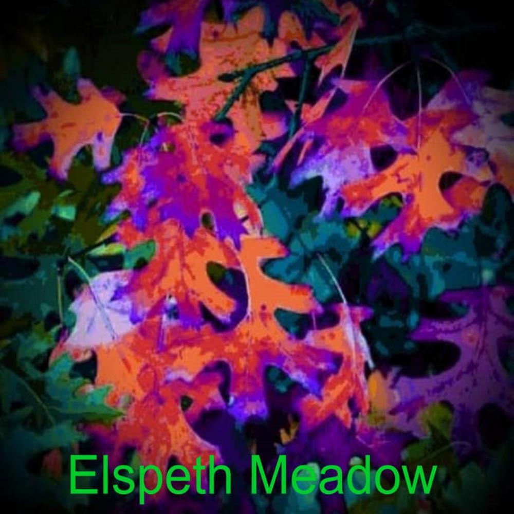 Elspeth Meadow (as Elspeth Meadow) by SENIOR, KEN album cover