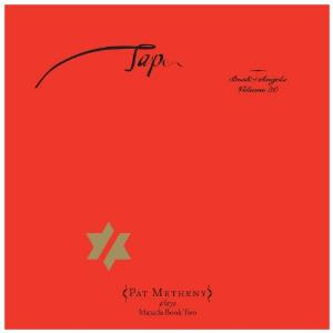 Pat Metheny Tap: Book of Angels Volume 20 album cover