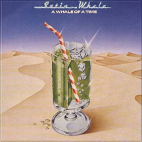 Satin Whale A Whale Of A Time album cover