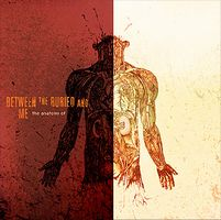 Between The Buried And Me The Anatomy Of... album cover