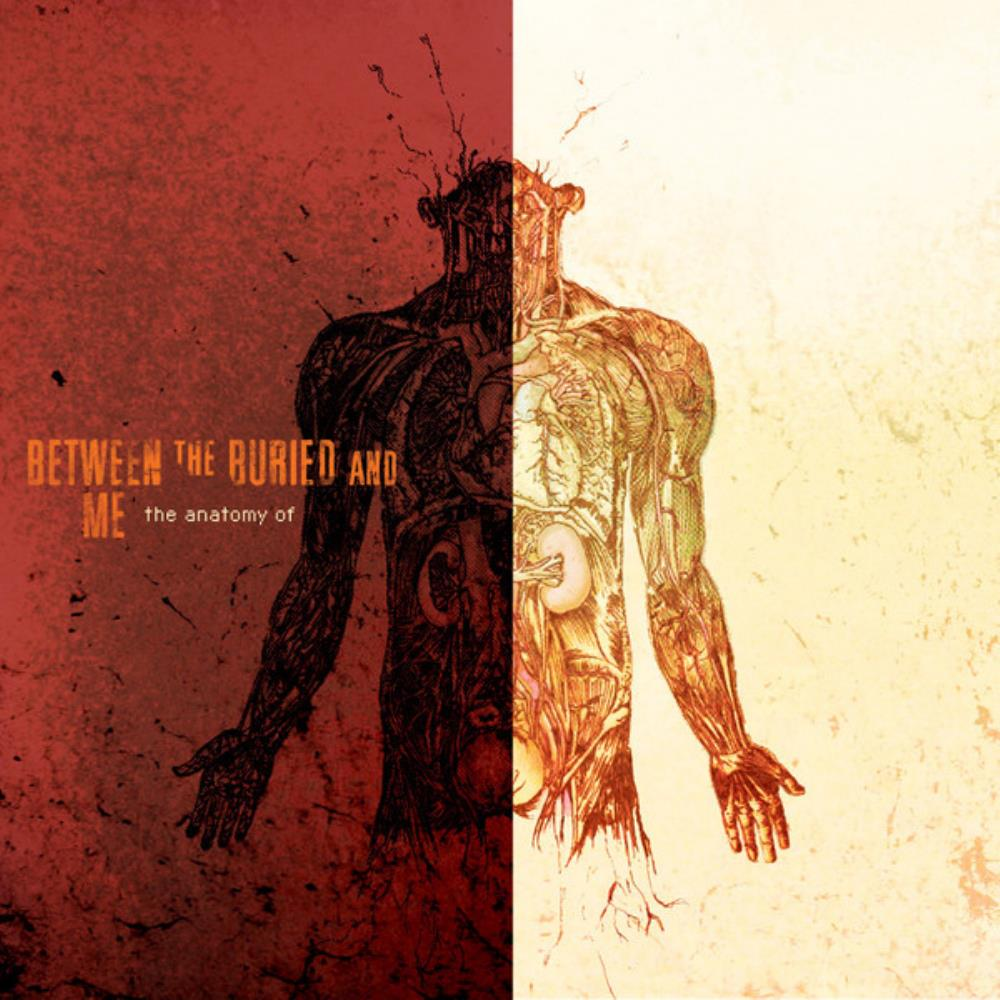 The Anatomy Of... by BETWEEN THE BURIED AND ME album cover