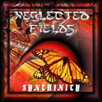 Neglected Fields Synthinity  album cover