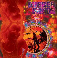 Wicked Minds - Live At Burg Herzberg Festival 2006 CD (album) cover
