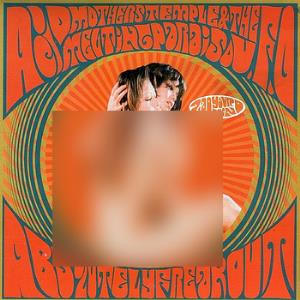 Acid Mothers Temple Absolutely Freak Out album cover