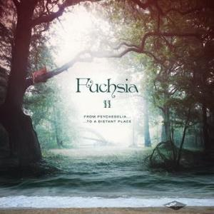 Fuchsia - Fuchsia II: From Psychedelia...To a Distant Place CD (album) cover
