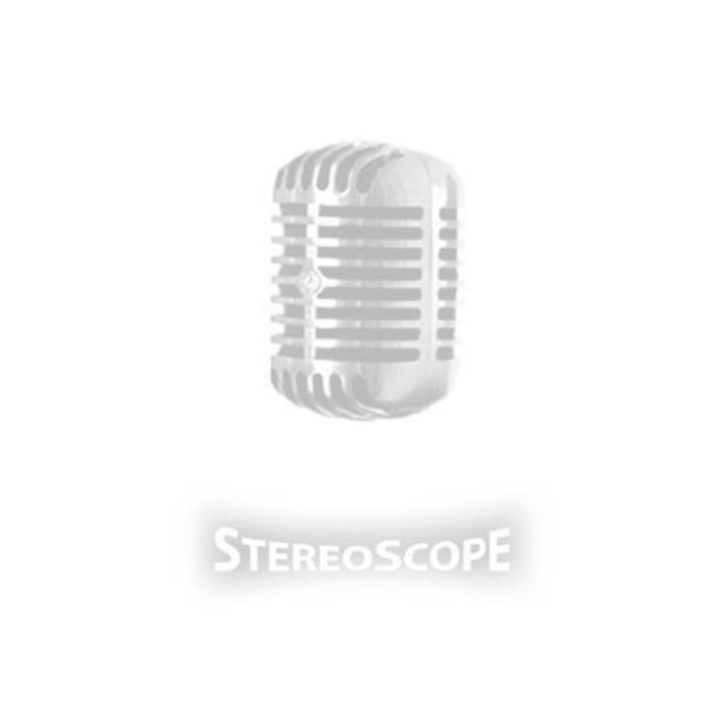 Stereoscope: Stereoscope by BLACK NOODLE PROJECT, THE album cover