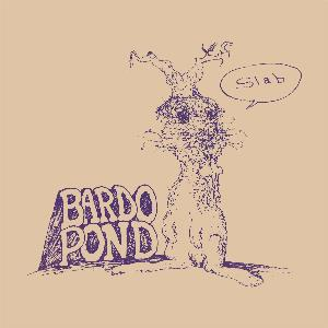 Bardo Pond Slab album cover