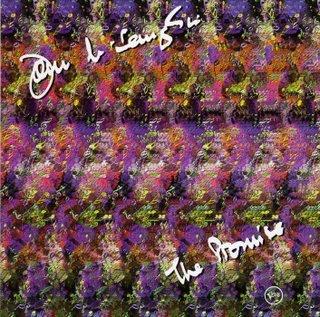 The Promise by MCLAUGHLIN, JOHN album cover