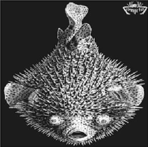 Various Artists (Concept albums & Themed compilations) Strange Fish Five album cover