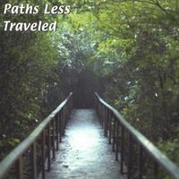 Various Artists (Concept albums & Themed compilations) Paths Less Traveled album cover