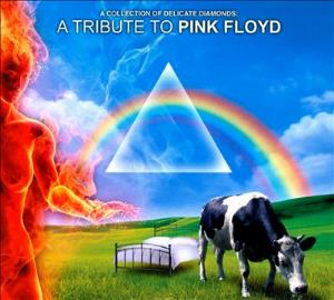 A Collection of Delicate Diamonds - A Tribute to Pink Floyd by VARIOUS ARTISTS (TRIBUTES) album cover