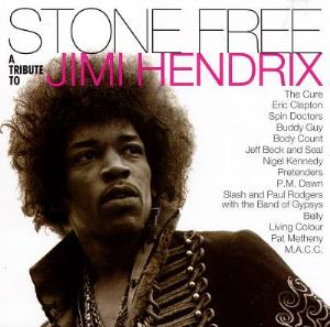 Various Artists (Tributes) Stone Free: A Tribute to Jimi Hendrix album cover
