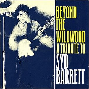 Various Artists (Tributes) Beyond The Wildwood - A Tribute To Syd Barrett album cover