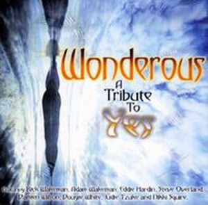 Various Artists (Tributes) Wonderous album cover