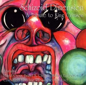 Various Artists (Tributes) Schizoid Dimension - A Tribute To King Crimson album cover