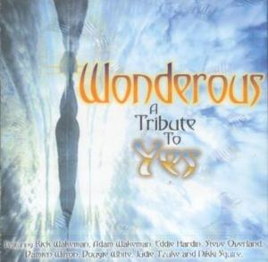 Various Artists (Tributes) - Wonderous CD (album) cover