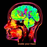 �resund Space Collective Inside Your Head album cover