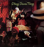 String Driven Thing by STRING DRIVEN THING album cover