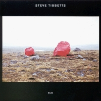 Steve Tibbetts Exploded View album cover