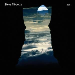 Steve Tibbetts Natural Causes album cover