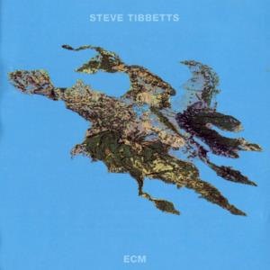 Steve Tibbetts Big Map Idea album cover