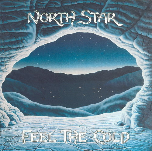 Feel The Cold by NORTH STAR album cover
