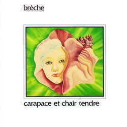 Carapace Et Chair Tendre  by BRECHE album cover
